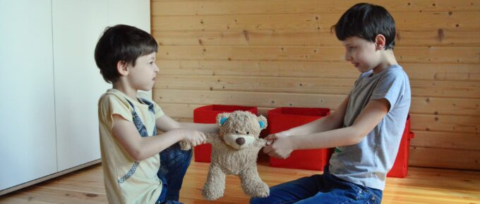 sibling spats two boys fighting over teddy bear